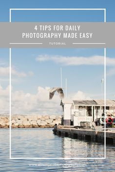 Trying to improve your photography skills?  Check out these 4 tips for making daily photography easier.