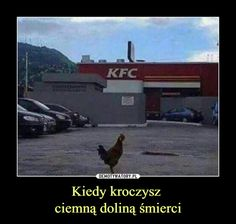 Funny Pictures That Will Make You Laugh on Bad Day - 2 Kfc, Funny Kids, The Funny, Funny Pranks, Funny Memes, Lds Memes, Funny Quotes, Hilarious, Funny Humour