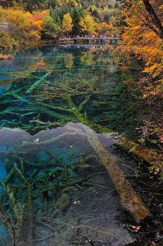 Five-Flower Lake in Jiuzhaigou Valley, Sichuan, China
