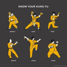 Reminds me of Kung Fu Panda Self Defense Martial Arts, Kung Fu Martial Arts, Chinese Martial Arts, Martial Arts Workout, Martial Arts Training, Martial Arts Styles, Martial Arts Techniques, Kung Fu Techniques, Shaolin Kung Fu