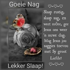 Goeie Nag, Afrikaans Quotes, Good Night Sweet Dreams, Good Night Quotes, Jesus Is Lord, Positive Thoughts, Evening Quotes, Sleep Tight, Scriptures