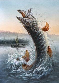 fishing pikes Art HD Wallpaper