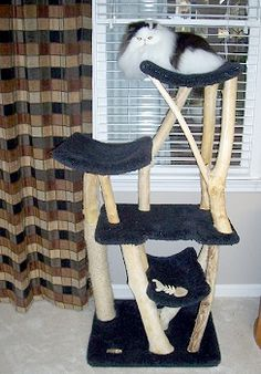 About Furwood Forest Cat Furniture...very unique...read their story