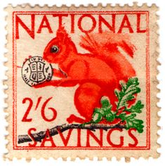 The Revenue Stamp Specialist Gb Uk, Letter Boxes, Cat Clock, Mail Art, Stamp Collecting, Squirrels, British Isles, Natural History, Postage Stamps
