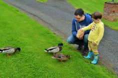 Top 20 activities dads are entertaining kids with this Summer