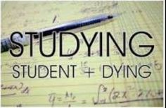 Studying. Student+dying can we please send this to our teachers