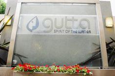 FRANQUICIA GUTTA. Local insignia, la cascada.