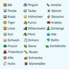 German animal vocabulary #German #deutsch #languagelearning