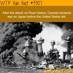 Looking back at Pearl Harbor, Dec. 1941 - The USS West Virginia burns and sinks after the attack on Pearl Harbor, Dec. Wtf Fun Facts, True Facts, Funny Facts, Random Facts, Ww2 Facts, Facts About Canada, Facts About Guys, Uss Arizona, Jokes