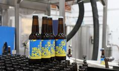 This lady gets a LOT of love. Hello, My Name is Ingrid is our cloudberry-infused Double IPA. She's a wild one. http://www.brewdog.com/blog-article/looking-for-an-anti-valentines-celebration