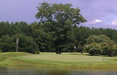 Penny Branch Golf Club in Furman, SC. #SCLowcountry #HamptonCounty #GolfSC