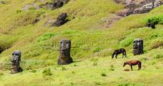 View from inside the Rano Raraku Volcano's crater.  Here are a lot of Moai statues are at different stages of sculpted.  The current inhabitants, the horses, are everywhere.  Easter Island (Rapa Nui),  Valparaiso region, Chile.