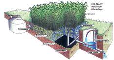 Koreňová čistička odpadových vôd :: bzovikdp Filter, Smart Home, Sustainability, Plants, Design, House, Home, Flora, Haus