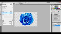 How To Save Picture As Transparent Without White Background Photography Editing, Photo Editing, Web 2.0, Photoshop Elements, Lightroom, Adobe, Graphic Design, Youtube, Cricut
