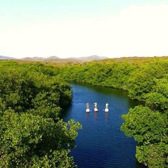 Paddleboarding looks downright peaceful. Aruba MUST do #41 #aioutlet
