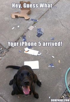 NOT funny!!!!  :)