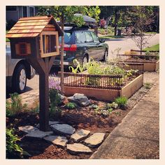 I'd like to make a Little Free Library in our front yard, with blueberry bushes around it.