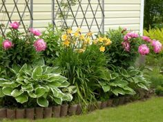 The Chic Technique:  Fresh and beautiful backyard landscaping idea