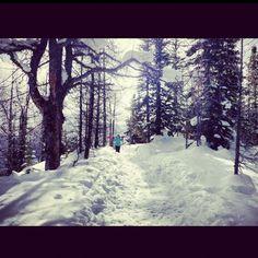 Skiing  #CDNGetaway