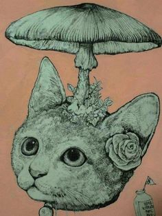 Yuko Higuchi has the cutest art Art Inspo, Kunst Inspo, Mushroom Drawing, Mushroom Art, Art And Illustration, Art Hippie, Arte Indie, Japanese Artwork, Here Kitty Kitty