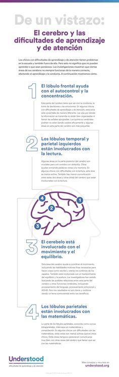 Gráfico de De un vistazo-El cerebro y las dificultades de aprendizaje y de atención
