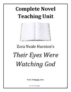 this pack includes a during viewing worksheet and a follow up quiz  their eyes were watching god lesson plans unit 68 pages