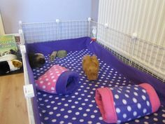 set of 2** Fleece bedding pet cage fleece liner 3 layer for hedgehog, guinea pig, small animals cavy C&C Midwest cages