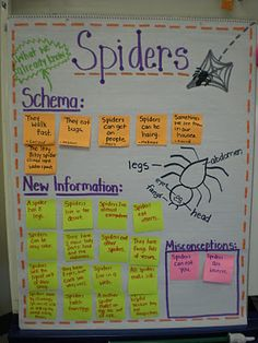 This is such a cute lesson that taps into background knowledge and helps students organize the information they learn. SCIENCE: ACTIVATING SCHEMA AND FACT CHECKS (I wish I had this idea when I was introducing schema! Science Classroom, Teaching Science, Teaching Reading, Teaching Ideas, Classroom Ideas, Kindergarten Science, Elementary Science, Upper Elementary, Guided Reading