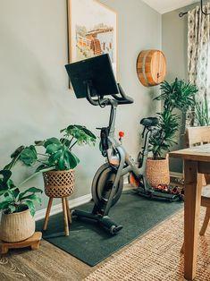 Guest Bedroom, Decor, Multipurpose Room, Home, Interior, Bike Room, Gym Room At Home, Home Decor, Room