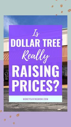 Oh no! Dollar Tree might be raising prices?! #dollartree #budgeting #savemoney #dollarstore Living On A Budget, Frugal Living Tips, Paying Off Credit Cards, Envelope System, Money Saving Mom, Save Money On Groceries, Read News, Shopping Hacks, Extra Money