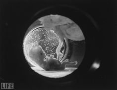 A view of fetus in an artificial womb in 1965. Surely they mean....A view of a baby in an artificial womb?????