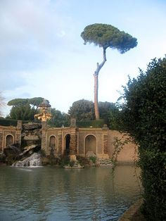Fontana del giglio, Alessandro Algardi. Villa Doria Pamphily is divided in four areas, the representative area, the orchard, the pine tree forest and the hunting area. This beautiful fountain surmounted by the coat of arms of the Pamphily family is leading through a channel to a little lake