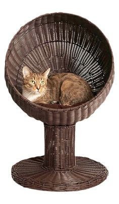 Woven cane cat bed // mod-inspired design #designer_pet