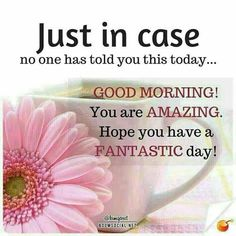 Just In Case No One Told You Good Morning morning. Just In Case No One Told You Good Morning morning. Morning Greetings Quotes, Good Morning Messages, Good Morning Wishes, Morning Images, Morning Qoutes, Good Morning My Friend, Morning Inspirational Quotes, Morning Thoughts, Night Wishes
