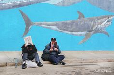 Men Sitting On The Sidewalk With Shark Wall In The Background The Tenderloin, San Francisco By Mitchell Funk  www.mitchellfunk.com