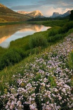 Headwaters of the Colorado, an anglers paradise, & life blood of the Pinedale valley and born from the meltwaters of the Wind River Mountains. Monday Pictures, Beautiful World, Beautiful Scenery, Green River, The Mountains Are Calling, Nature Scenes, Natural World, Amazing Nature, Wonders Of The World