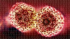 Global Data Sharing Can Save the Lives of Cancer Patients