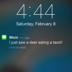 I'm pretty sure this is the best text I've ever gotten #MomTexts