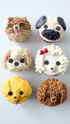 Cupcakes Real dog lovers would know how to pipe pug and poodle cupcakes, am I right?Real dog lovers would know how to pipe pug and poodle cupcakes, am I right? Brownie Desserts, Oreo Dessert, Mini Desserts, Puppy Cupcakes, Animal Cupcakes, Bow Cupcakes, Puppy Cake, Cupcake Recipes, Cupcake Cakes