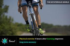 #exercise #memory #facts