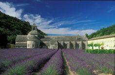 Lavender so romantic Provence, Romantic Travel, Photos, France, Mansions, House Styles, Building, Home Decor, Alps