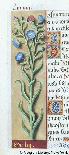 Book of Hours, MS M.732 fol. 55v - Images from Medieval and Renaissance Manuscripts - The Morgan Library & Museum
