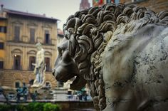 This is a statue that stands in Florence, Italy today. It is called il Marzocco.