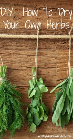 DIY How to Dry Your Own Herbs..