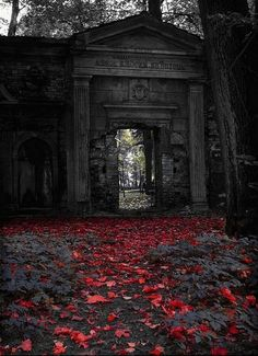 spooky doorways