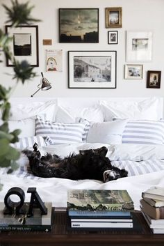 cozy feel