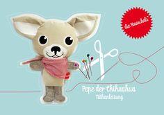 Pepe der Chihuahua