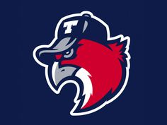 Hawks minor league baseball team logo