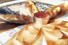 Flores de loto con el papel del horno