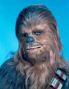 Peter Mayhew poses as Chewbacca - Star Wars: Behind the scenes pictures - Digital Spy Star Wars Characters, Star Wars Episodes, Starwars, Han Solo And Chewbacca, Chewbacca Costume, Cuadros Star Wars, Star Wars Personajes, Star Wars Tattoo, Episode Iv